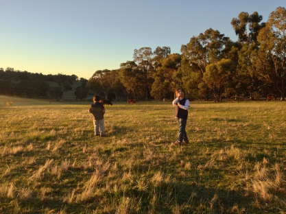 In the fields at Wandoo Rise